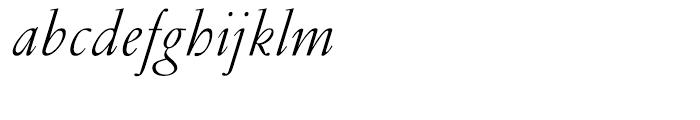 Garamond Light Italic Ludlow Font LOWERCASE