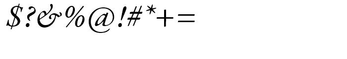 Garamond Premier Italic Font OTHER CHARS