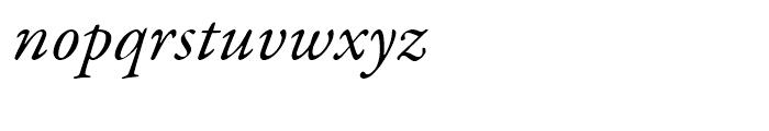 Garamond Premier Italic Font LOWERCASE