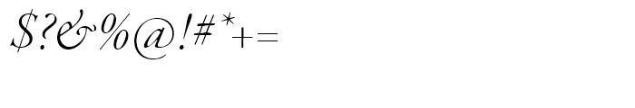 Garamond Premier Light Italic Display Font OTHER CHARS