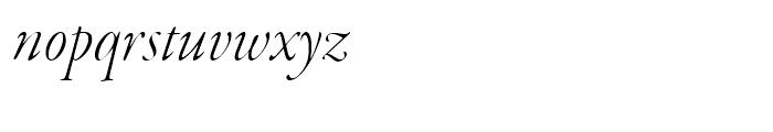 Garamond Premier Light Italic Display Font LOWERCASE