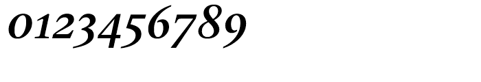 Gauthier Next FY Bold Italic Font OTHER CHARS