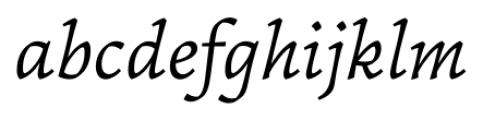Garibaldi Italic Font LOWERCASE