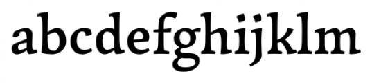 Garibaldi Medium Font LOWERCASE