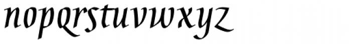 Gaius Pro Bold Font LOWERCASE