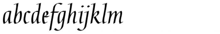Gaius Pro Font LOWERCASE