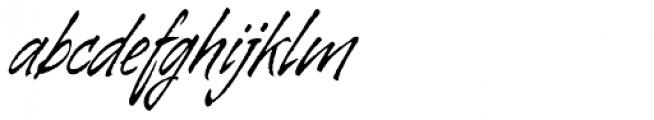 Galgo Script Alt Font LOWERCASE