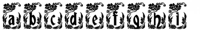 Gans Gotico Globo Decorative Font LOWERCASE