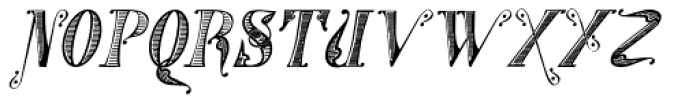 Gans Tipo Adorno Handtooled Italic Font UPPERCASE