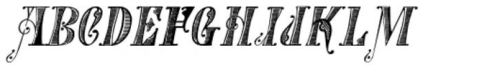 Gans Tipo Adorno Handtooled Italic Font LOWERCASE