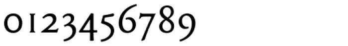Garaline Regular Font OTHER CHARS