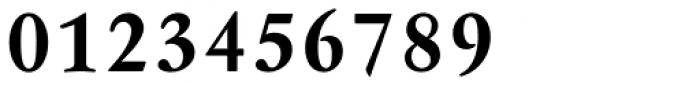 Garamond Antiqua Pro Demibold Font OTHER CHARS