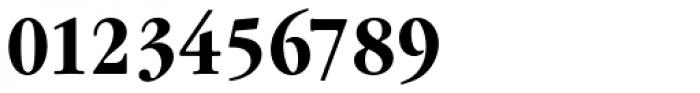 Garamond Nova Pro Condensed Bold Font OTHER CHARS