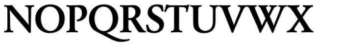 Garamond Nr 2 SB Medium Font UPPERCASE