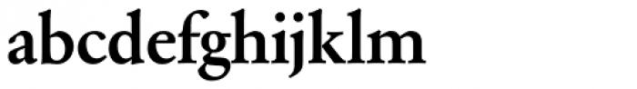 Garamond Nr 2 SB Medium Font LOWERCASE