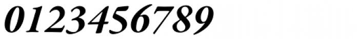 Garamond Premr Pro Bold Italic Font OTHER CHARS