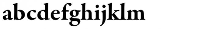 Garamond Premr Pro Bold Font LOWERCASE