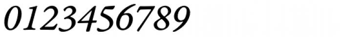 Garamond Premr Pro Caption Italic Font OTHER CHARS