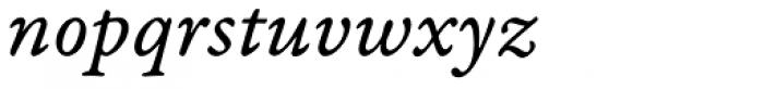 Garamond Premr Pro Caption Italic Font LOWERCASE