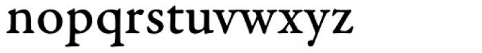 Garamond Premr Pro Caption Med Font LOWERCASE