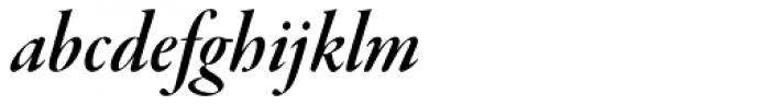 Garamond Premr Pro Display SemiBold Italic Font LOWERCASE
