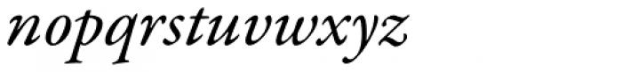 Garamond Premr Pro Med Italic Font LOWERCASE