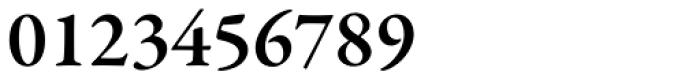 Garamond Premr Pro SemiBold Font OTHER CHARS