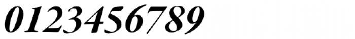 Garamond Premr Pro SubHead Bold Italic Font OTHER CHARS