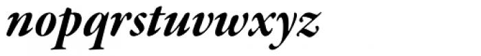 Garamond Premr Pro SubHead Bold Italic Font LOWERCASE