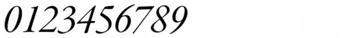 Garamond Premr Pro SubHead Italic Font OTHER CHARS