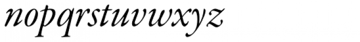 Garamond Premr Pro SubHead Italic Font LOWERCASE