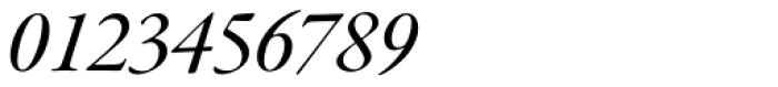 Garamond Premr Pro SubHead Med Italic Font OTHER CHARS