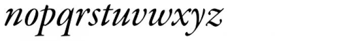 Garamond Premr Pro SubHead Med Italic Font LOWERCASE