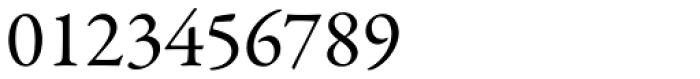 Garamond Premr Pro Font OTHER CHARS