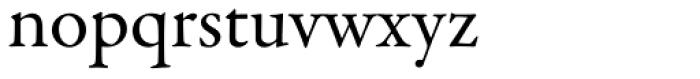 Garamond Premr Pro Font LOWERCASE