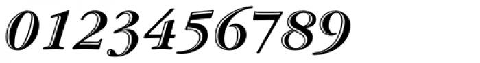 Garamond Std Handtooled Bold Italic Font OTHER CHARS