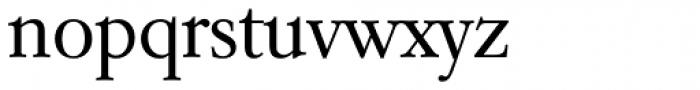 Garamond TS Light Font LOWERCASE
