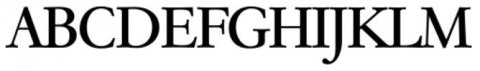 Garamond TS Regular Font UPPERCASE