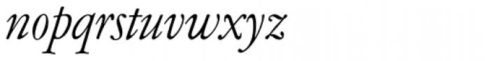 Garamont Amst EF Italic Font LOWERCASE