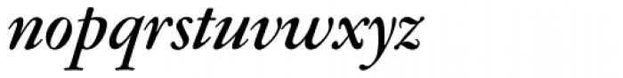 Garamont Amst EF Med Italic Font LOWERCASE