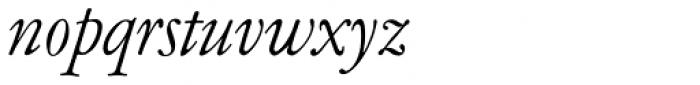 Garamont Amst SB Italic Font LOWERCASE