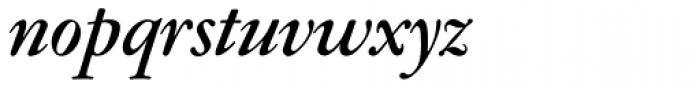 Garamont Amst SB Med Italic Font LOWERCASE