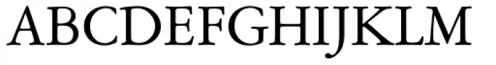 Garamont Amst SB Roman Font UPPERCASE