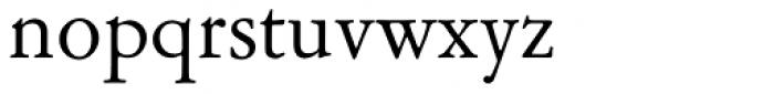Garamont Amst SB Roman Font LOWERCASE