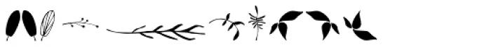 Garden Dingbats Font OTHER CHARS