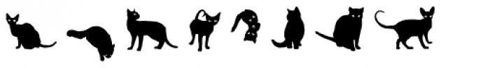 Gattofont Font LOWERCASE
