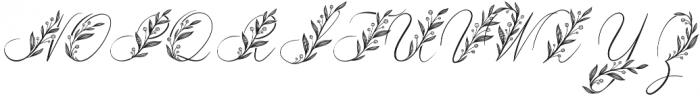 GentleWhisper Floral otf (400) Font UPPERCASE