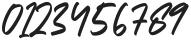 Georgiess Signature otf (400) Font OTHER CHARS