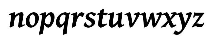 Gentium Basic Bold Italic Font LOWERCASE