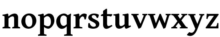 Gentium Basic Bold Font LOWERCASE